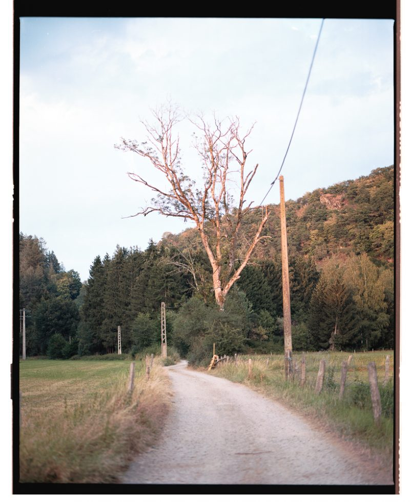 En Ardenne (13)